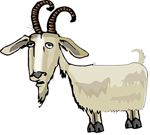 Dirty Goat